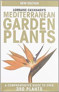 Mejor Mediterranean Garden Plants de 2020 - Mejor valorados y revisados