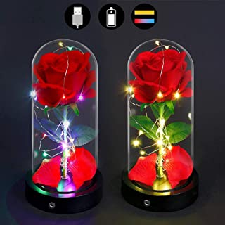 XDgrace Beauty and The Beast Rose, Enchanted Red Silk Rose Lamp with 2 Mode LED Fairy String Lights, USB Plug & Battery Powered Red Rose in Glass Dome for Valentines Day, Anniversary with Gift Card
