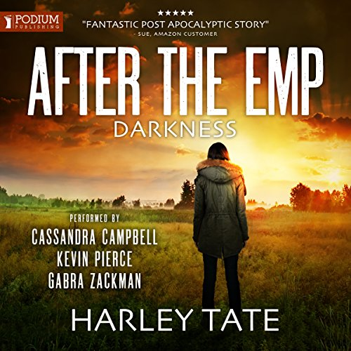 After the EMP: Darkness cover art