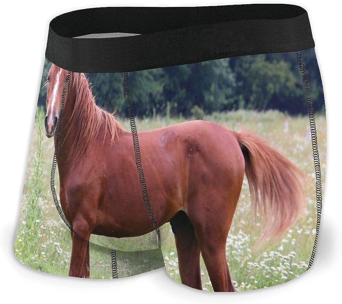 Randolph Wordsworth Mens Boxer Briefs Funny Horse Grazes Breathable Underwear