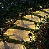 Solar Path Lights - Best Reviews Guide