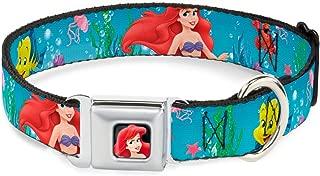 Buckle-Down Seatbelt Buckle Dog Collar - Ariel, Sebastian & Flounder Scene2 - 1.5