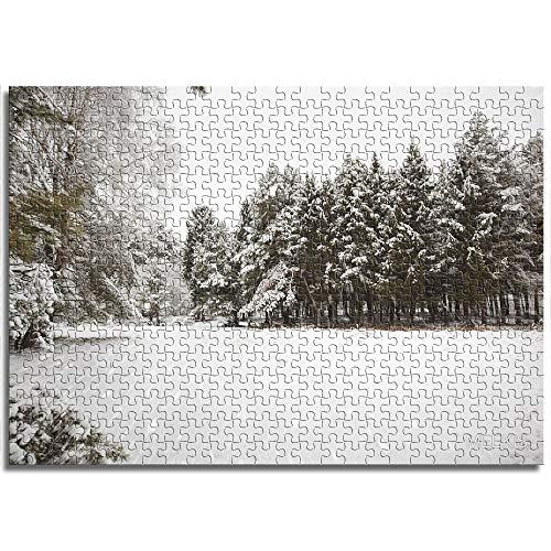 CELLYONE Puzzles für Erwachsene 1000 StückEvergreen Kiefer nach Schnee Lernspiele, Puzzle für Kinder
