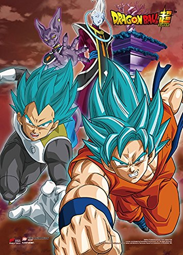 Dragon Ball Z Wall Scroll, Poster, One Size, Multicolor