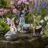 Smart Garden Led Solarlicht von magischen Eulen Set 3 Mehrfarbig