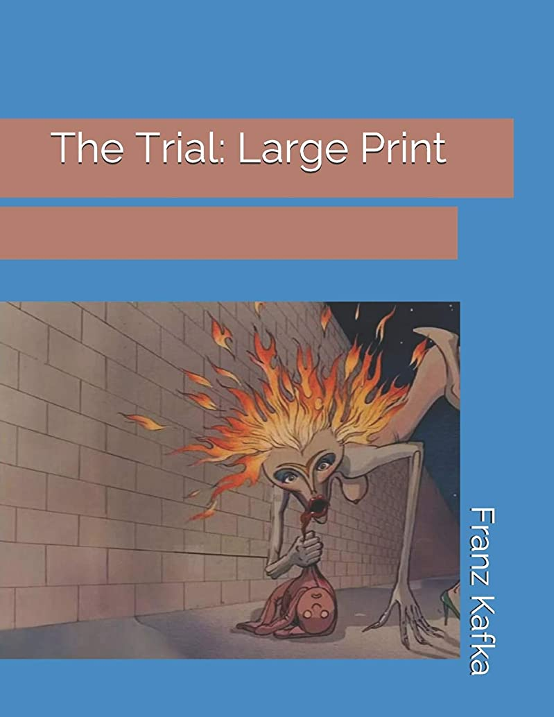 瞳サイト子羊The Trial: Large Print