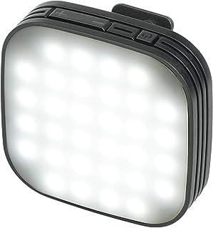 Kenko スマホ用LEDライト リアルプロクリップライト 自撮り用 フラッシュモード搭載 10段階光量調整 KRP-32L