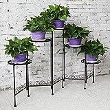 HLC- 5 Niveles Soporte para los bonsáis, Plantas, Flores, adecuados para Interior y...