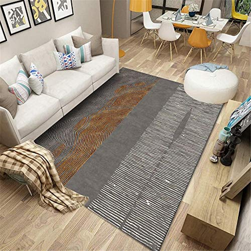rugs bedroom room Carpet gray blurred stripes retro soft living room carpet water wash Gray carpet 200X300CM hall rug 6ft 6.7''X9ft 10.1''