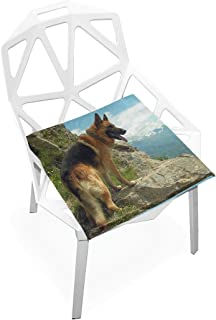 Seat Cushion German Shepherd Dog Pictures Chair Cushion Offices Butt Chair Pads Square Wheelchairs Mat for Indoor