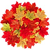 MSDADA 1100 Pcs Fall Colored Artificial Maple Leaves Autumn Fake Maple Leaf Bulk for Thanksgiving Wedding Party Garden Events Home Table Decor Indoor Outdoor Wreath Decoration (Multicolored)