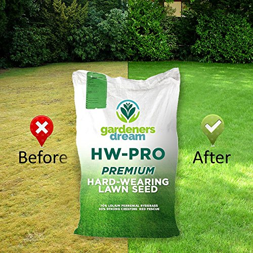 Gardeners Dream Shady Lawn Grass Seed - best grass seed for shade