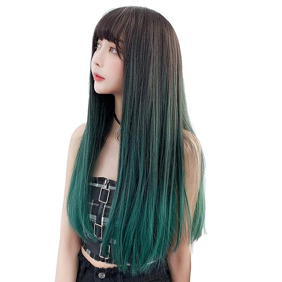 方程式に勝る統計的SRY-Wigファッション 女性の耐熱繊維髪合成レースフロントかつら130%密度長い絹のようなファッションストレートウィッグ (Color : 02, Size : フリー)