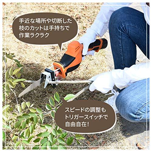 山善(YAMAZEN)10.8V充電式高枝切りガーデンポールソーポール高さ3段階調整日本製刃使用(着脱式ポール)(コードレス)LPS-1025OR