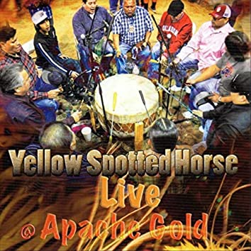 Live @ Apache Gold