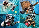 Underwater Dogs: Pool Pawty 1000-Piece Puzzle