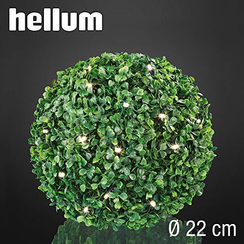 Hellum 578591 Solar LED Buchsbaum-Kugel/Ø 22 cm / 30 LEDs warmweiß/innen & außen/Zuleitung 5 m grün/inkl. Solar-Panel & Außen-Transformator