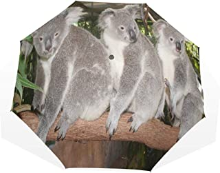Umbrella Huggable Australia Bears Koalas Animals Folding Sun Protection Anti-UV Umbrella Windproof Lightweight for Men/Women