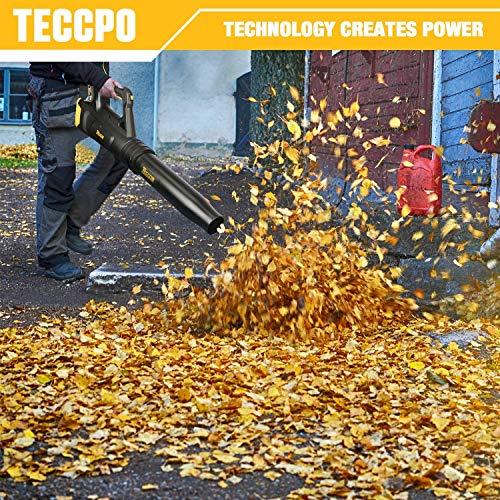 TECCPO Cordless Leaf Blower 20V, Turbine Fan, 85MPH 310CFM Air Volume, Dual Speed Adjustment, 2.0AH Lithium Battery- TDAB02G