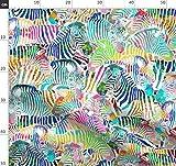Zebra, Pferd, Regenbogen, Afrika, Zoo, Animal Print, Tier