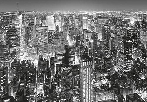 WTD mantiburi papier peint motif nEW yORK manhattan (141i) dimensions: 366 x 254 cm - 8 pièces-noir/blanc-midtown ville uSA mer naturel pour chambre d'enfant motif paysage de la cuisine tapeten