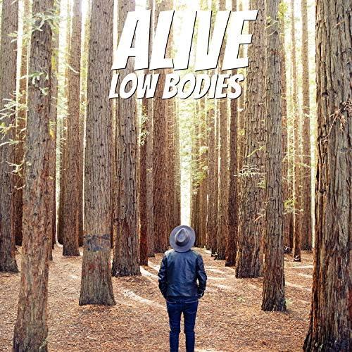 Low Bodies