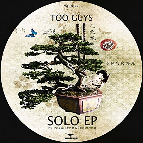 Solo (Pasqual Kreher Remix)