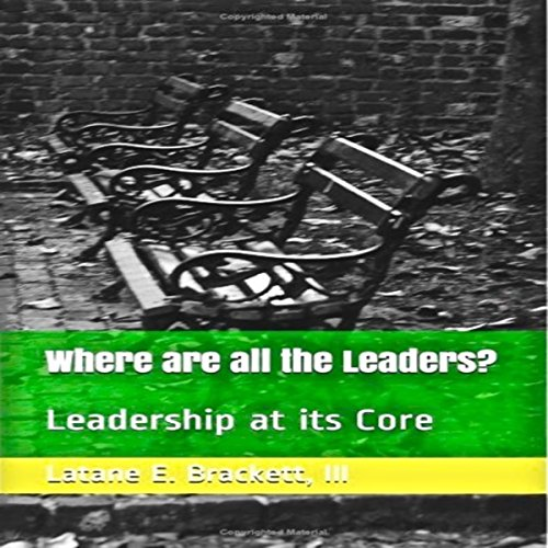 Where Are All the Leaders? audiobook cover art