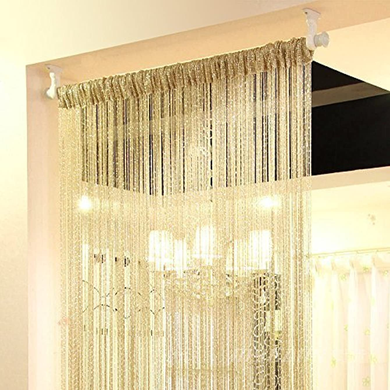 Hdecor 39X78 inch Door String Curtain Rare Flat Silver Ribbon Thread Fringe Window Panel Room Divider Cute Strip Tassel for Wedding Coffee House Restaurant Parts (Champagne)