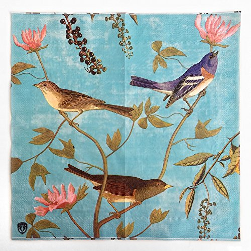Colored Paper Napkins, 20 Count Shabby Chic Napkins for Wedding, Dinner Tea Party Shower… (Floral Birds Retro Vine, 1)