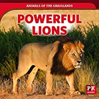Powerful Lions (Animals of the Grasslands)