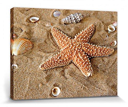 1art1 Estrellas De Mar - Estrella De Mar con Conchas Marinas En La Arena Cuadro, Lienzo Montado sobre Bastidor (40 x 30cm)