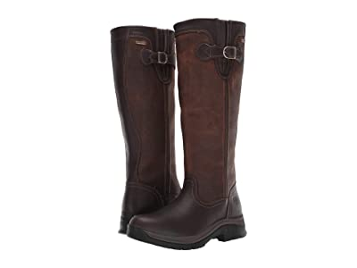 Ariat Belford GTX Women