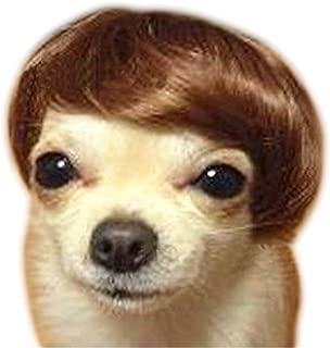 NACOCO(TM Pet Dog High Temperture Wire Wig Pet Accessories Pet Headwear