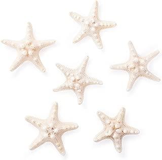 Starfish Natural Knobby Mini Beach Sea Stars for Wedding Seashell Crafts (Large, 6 Piece)
