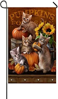 YQZsay Cute Cat Play The Pumpkin Autumn For Sale 12X18 inch Garden Flag - Double Sided Holiday Decorative Outdoor House Flag