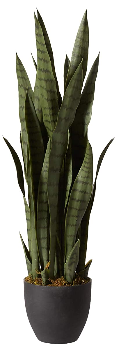 Nearly Natural 4855 Sansevieria Plant with Black Planter, Green