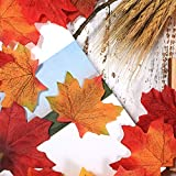 Zoom IMG-2 boao 650 pezzi foglie d