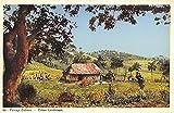 Cuban Landscape Cuba, Republica de Cuba Postcard