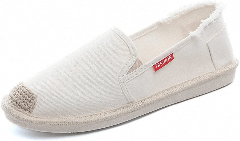 Women's Fashion Canvas Slip On Sneaker Walking Flat Loafer shoes