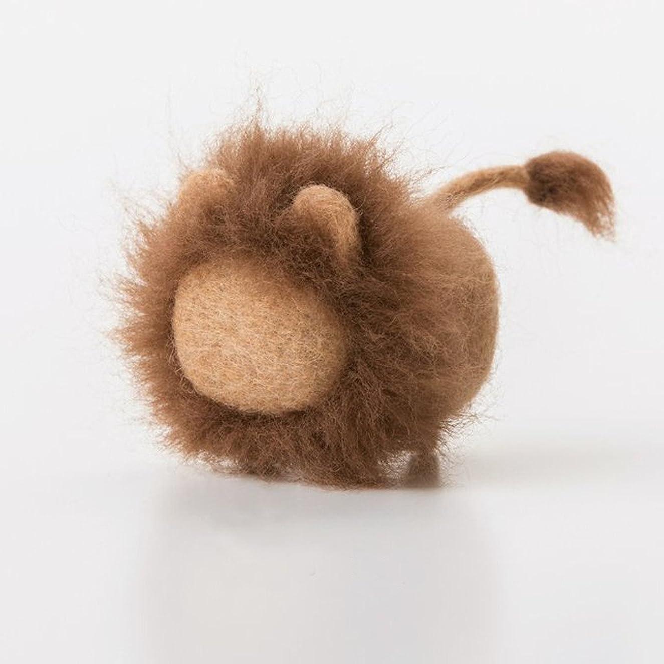 Truslin - DIY Needle Felting Kit with Gift Box DIY Toys Faceless Animal - Lion