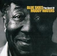 Blue Skies the Best of Muddy Waters by Muddy Waters (2002-03-01)
