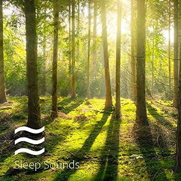 Calma mental y sonidos de alivio