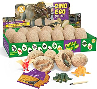 Archaeological excavation toys 12 Different Fossil/Eggs with 12 Excavation Kits, Excavation Educational Science Gifts for ...