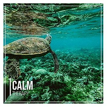 # Calm Therapy