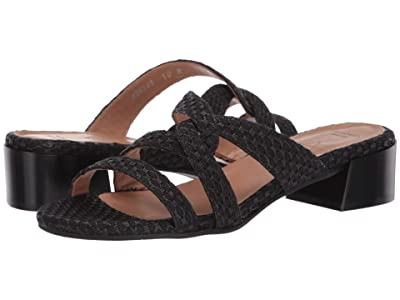Aquatalia Hollie (Navy Woven Raffia) Women