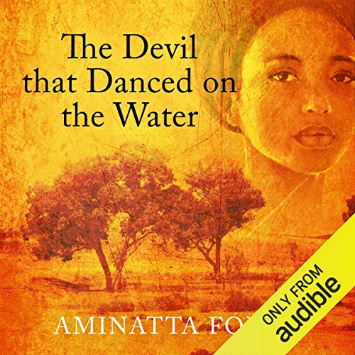 The Devil That Danced on the Water cover art