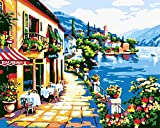 Paint by Numbers Kits DIY Acrylic Painting Kit Schönes Gartenhaus with Brushes and Pigment Arts Craft Canvas Painting for Kids & Adults, 16 x 20 inch(Without Frame)
