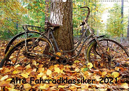 Alte Fahrradklassiker 2021 (Wandkalender 2021 DIN A2 quer)