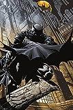 Batman Póster Gotham Stalker/Acosador de Ciudad Gótica (61cm x 91,5cm) + 1 póster Sorpresa de Regalo